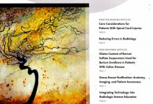 "Order a Landscape Anatomy painting of your choice for your Medical Facility. ASRT Cover Art ""Stormy Cerebral"""